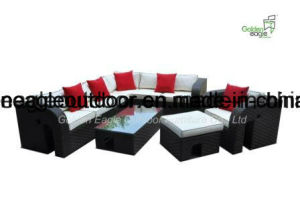 Morden Outdoor Sofa PE Rattan Designer Garden Wicker Furniture (S0214) pictures & photos