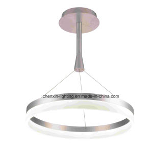 Competitive Large Acrylic Pendant Lighting Direct From China