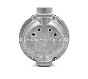 P250 Gas Pressure Regulator pictures & photos