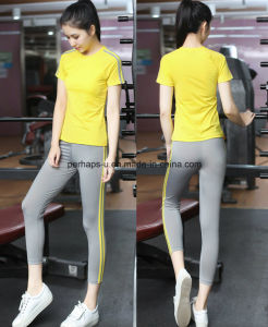 Fashion Quickly Dry Comfortable Ladies 2-Pieces Yoga Clothes Fitness Suit pictures & photos