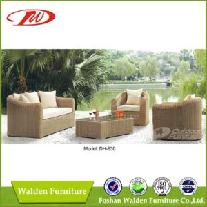 Wicker Furniture Rattan Sofa Dh-830 pictures & photos