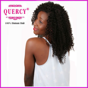 Quercy Hair Top Quality Natural Curly 100% Virgin Peruvian Human Hair pictures & photos
