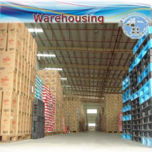Container & Warehousing Shipment, Ocean Shipping (FCL 20′′40′′) pictures & photos