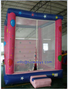 Lovely and Funny Inflatable Castle with Competitive Price (A006) pictures & photos