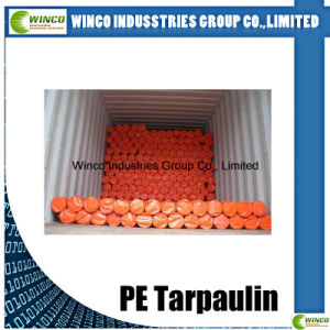 Widely Used Blue PE Tarpaulin Packed in Rolls pictures & photos