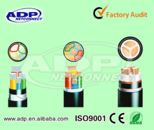 XLPE Insulated /Armoured /PVC Sheathed Power Cable 0.6/1 Kv Cable pictures & photos