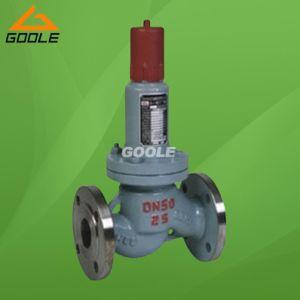 Parallel LPG Safety Reflux Valve (GAHN42F-P18) pictures & photos