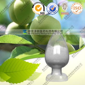 Natural Olive Leaf Extract 40% ~ 98% Oleanolic Acid pictures & photos
