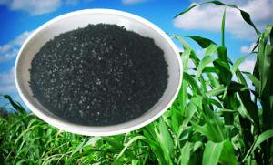 90% Soluble Organic Fertilizer Potassium Humate Humic Acid Fertilizer pictures & photos