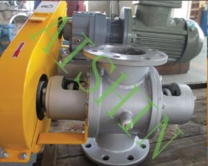 Rotary Valve (Material of SS400) pictures & photos