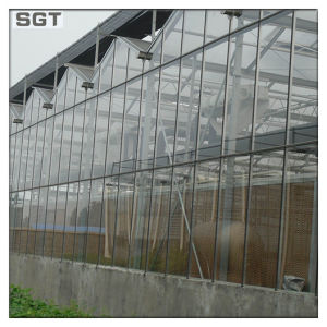 4mm Low Iron Tempered Glass for Greenhouse pictures & photos