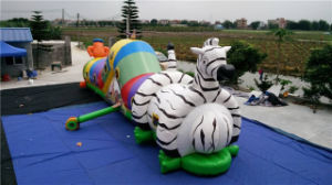 2016 Hot Sale Inflatable Tunnel Inflatable Playground for Sale pictures & photos