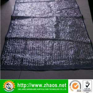 Family Use Shade Sail for Window pictures & photos