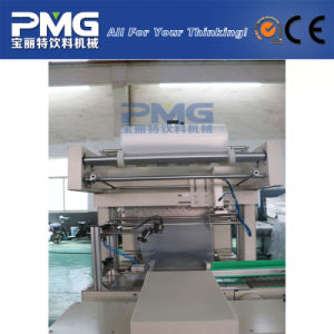 Best Price Semi Automatic PE Film Heat Shrink Packing Machine pictures & photos