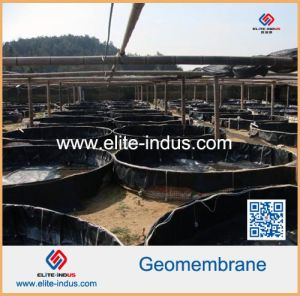 Plastic HDPE Sheet Geomembrane Film Liner pictures & photos