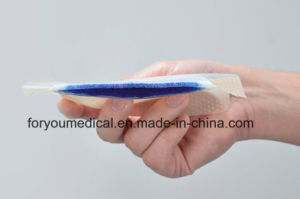 Foam Dressing with Silicone - Border Gp1001 pictures & photos