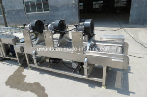 Vegetable Washing Machine with Drying System pictures & photos