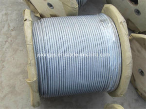 Steel Wire Rope /Galvanized Steel Wire Rope with PVC Coated 7*7 pictures & photos