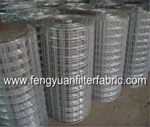 Stainless Steel Filter Wire Mesh pictures & photos