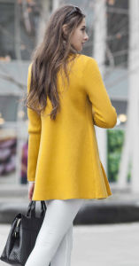Cashmere Sweater (1500002059) pictures & photos