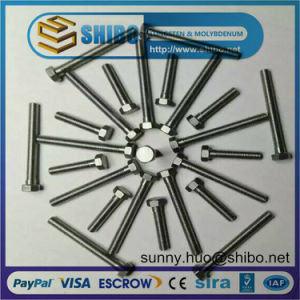 Top Quality Molybdenum Bolts and Screws pictures & photos