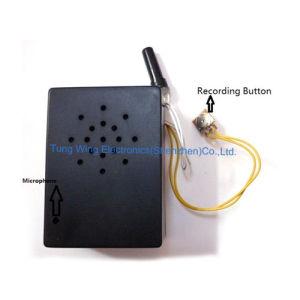Sensor Melody Module pictures & photos