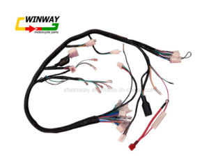 Ww-8807 Cg125 Motorcycle Wire Harness pictures & photos