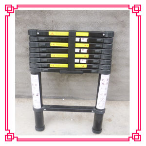New Telescopic Ladder with Electrophoresis Treatment pictures & photos