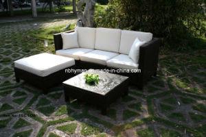 Outdoor Rattan Sofa (FSS-1139)