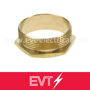 Male Female Bsp Brass Bushing pictures & photos