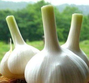 Allicin: 50% Min Garlic Oil CAS: 8000-78-0 Plant Extract