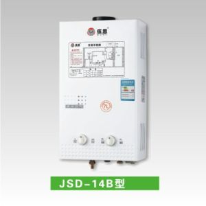 Biogas Water Heaters (JSD-14B)