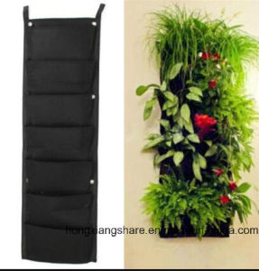 Living Wall Planter Bag for Vertical Garden Planting pictures & photos