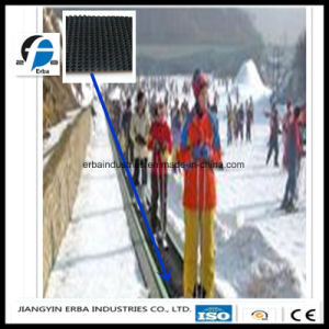 High Quality Ski Resort Rubber Conveyor Belt for Convey pictures & photos