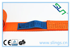 Sln RS24 Ratchet Strap (5tx10m) pictures & photos