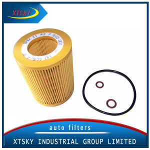 Xtsky Hot Selling Oil Filter (30750013) pictures & photos