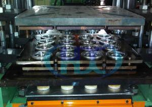 Vehicular Fuel Dispensing Pump Seals Mould