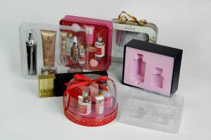 Cosmetic Plastic Packaging Case Plastic Case pictures & photos