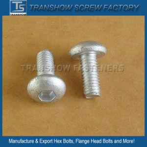 Ruspert Coated Socket Button Head Screw pictures & photos