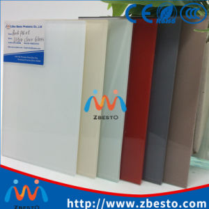 3mm 4mm 5mm 6mm Back Painted Glass/Splashback Glass Panels pictures & photos