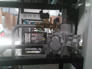 Fuel Dispenser with Printer Single Model Two Sides Service pictures & photos