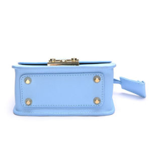 Popular Design Small Size Metal Chain Shoulder Bag Leather Lady Bag pictures & photos