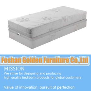Compressed High Density Memory Foam Mattress (103-1#) pictures & photos