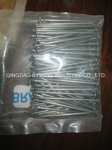 Common Nails (Wire Nails) Made in China Products with Best Quality Polised (3/8 inch to 6 inch)