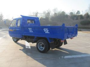 Three Wheel Vehicle with Cab pictures & photos