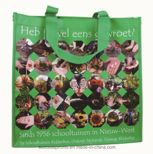 PP Woven Laminated Promotional Bag with Webbing Handle pictures & photos