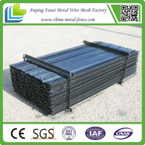 1.58kg/M Steel Y Post with Best Price pictures & photos