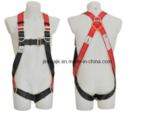 3 D-Ring Safety Harness (JE135119D) pictures & photos