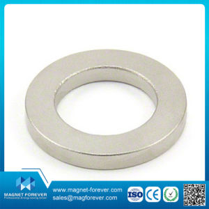 Permanent Rare Earth Magnet Ring NdFeB Neodymium Magnets pictures & photos