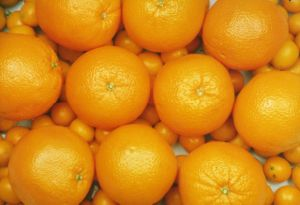 Export New Crop Fresh Good Quality Orange pictures & photos